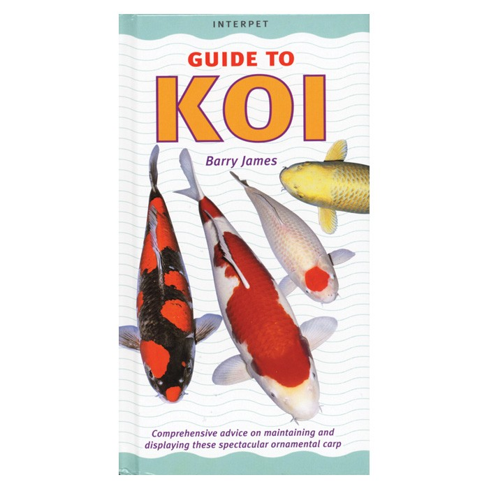 Guide to Koi